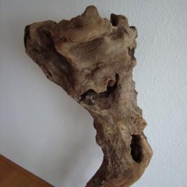 Skogman der Waldgeist