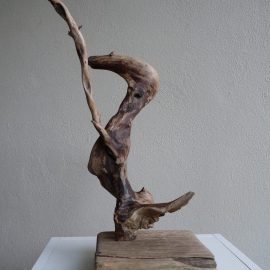 Dancing Duck